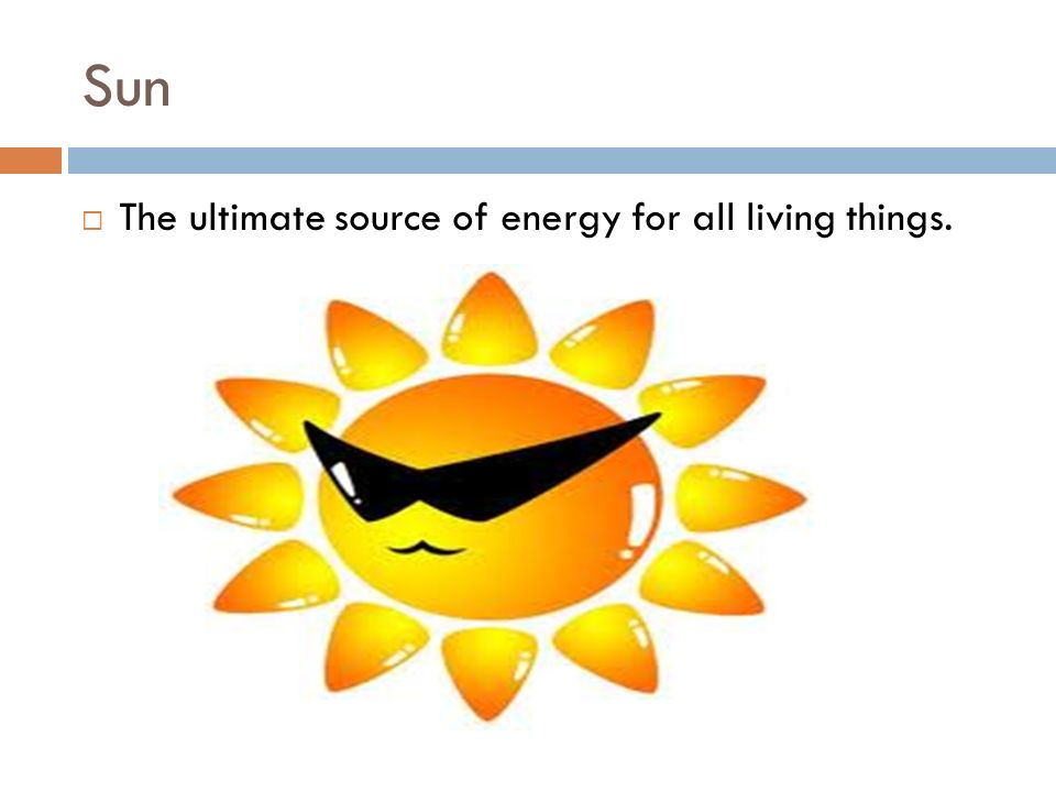 Sun  The ultimate source of energy for all living things.