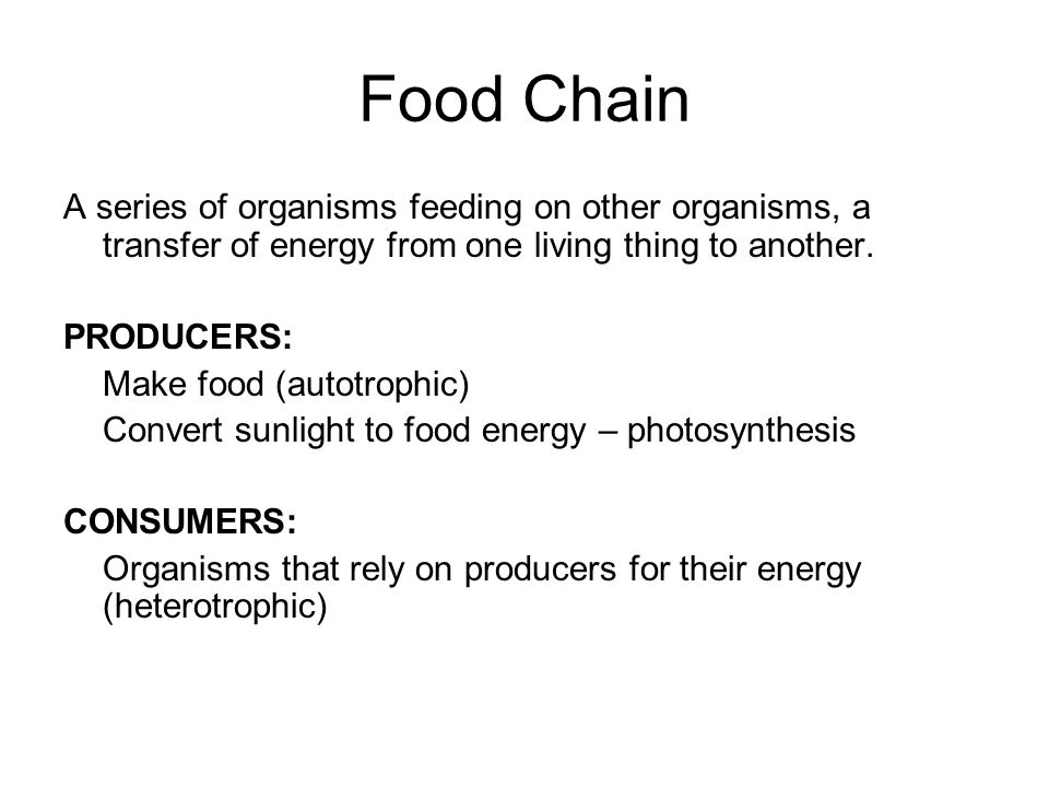 Food Chain A series of organisms feeding on other organisms, a transfer of energy from one living thing to another.
