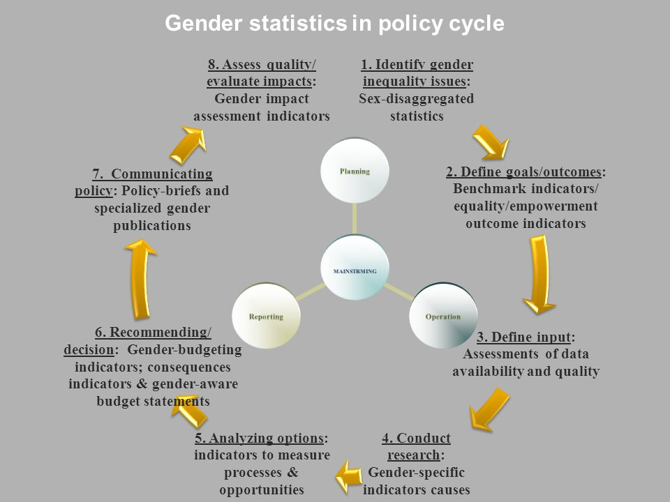 Gender statistics in policy cycle 1.