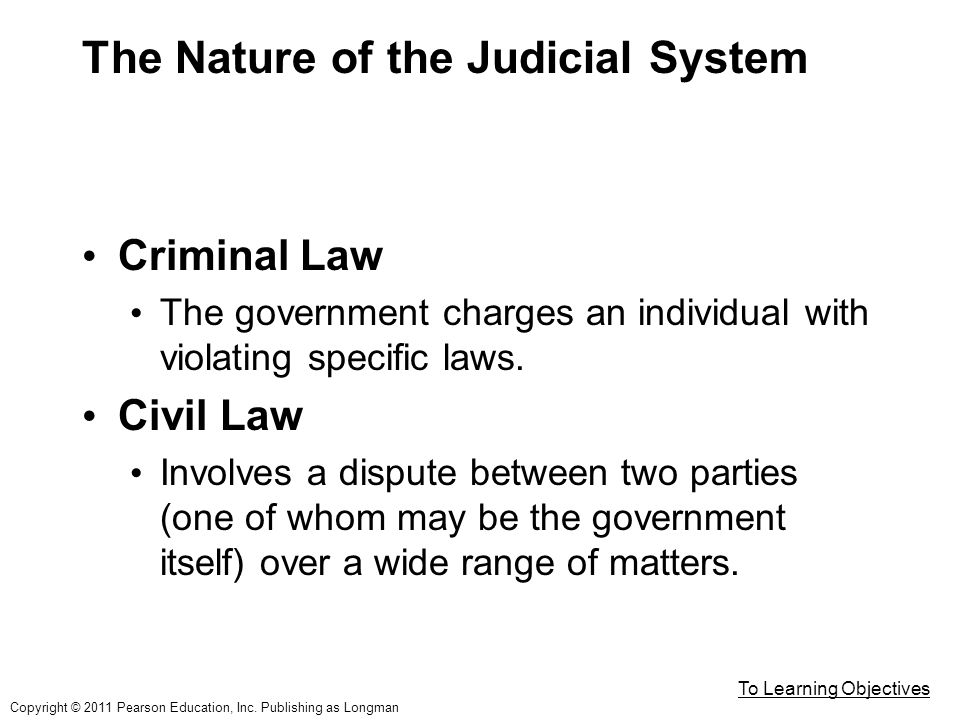 The Nature of the Judicial System Criminal Law The government charges an individual with violating specific laws.