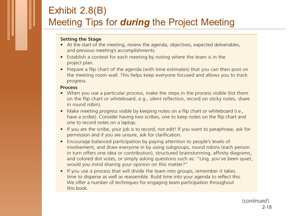 Exhibit 2.8(B) Meeting Tips for during the Project Meeting 2-18