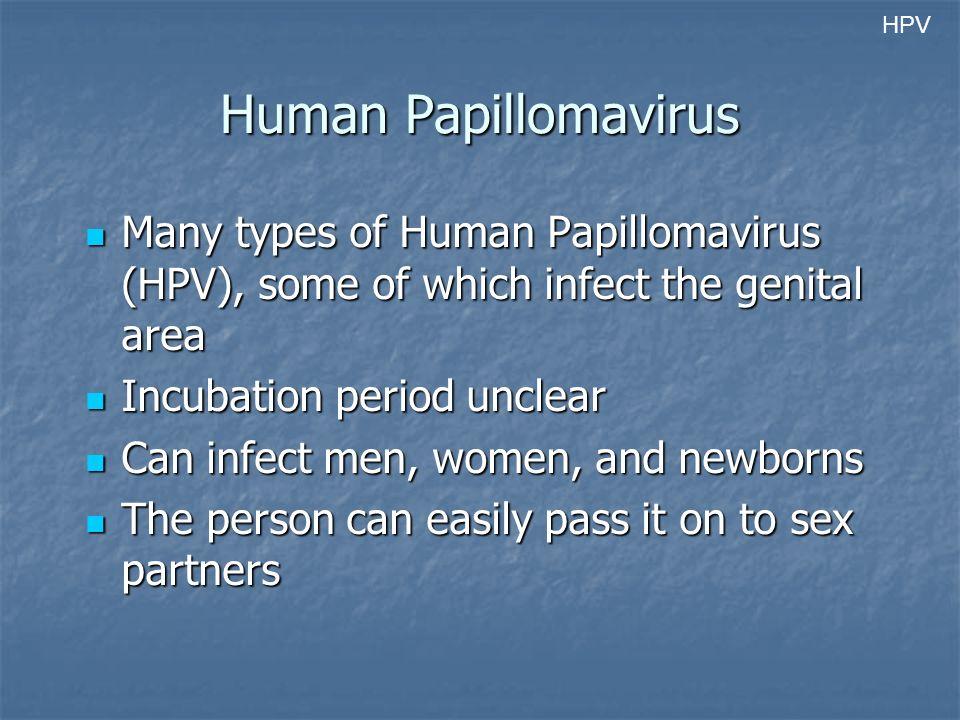Human Papillomavirus Many types of Human Papillomavirus (HPV), some of which infect the genital area Many types of Human Papillomavirus (HPV), some of