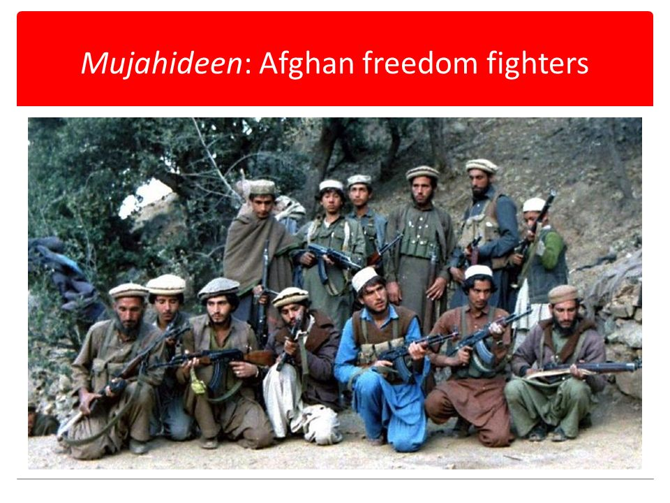 Mujahideen: Afghan freedom fighters