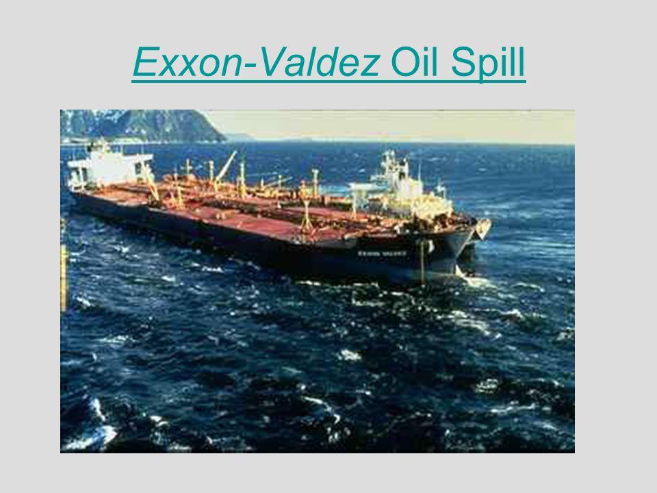 Exxon valdez essay