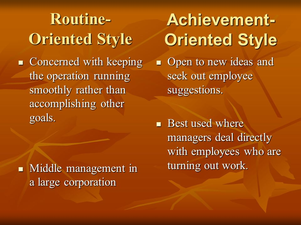 Routine- Oriented Style Concerned with keeping the operation running smoothly rather than accomplishing other goals. Concerned with keeping the operat