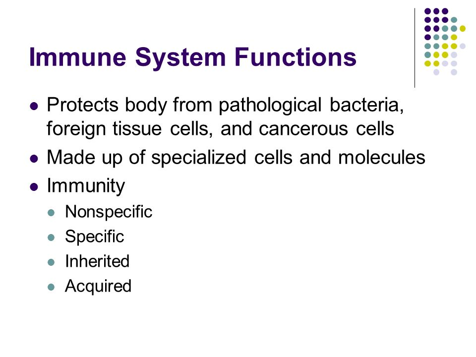 Immune System Functions Protects body from pathological bacteria, foreign tissue cells, and cancerous cells Made up of specialized cells and molecules Immunity Nonspecific Specific Inherited Acquired