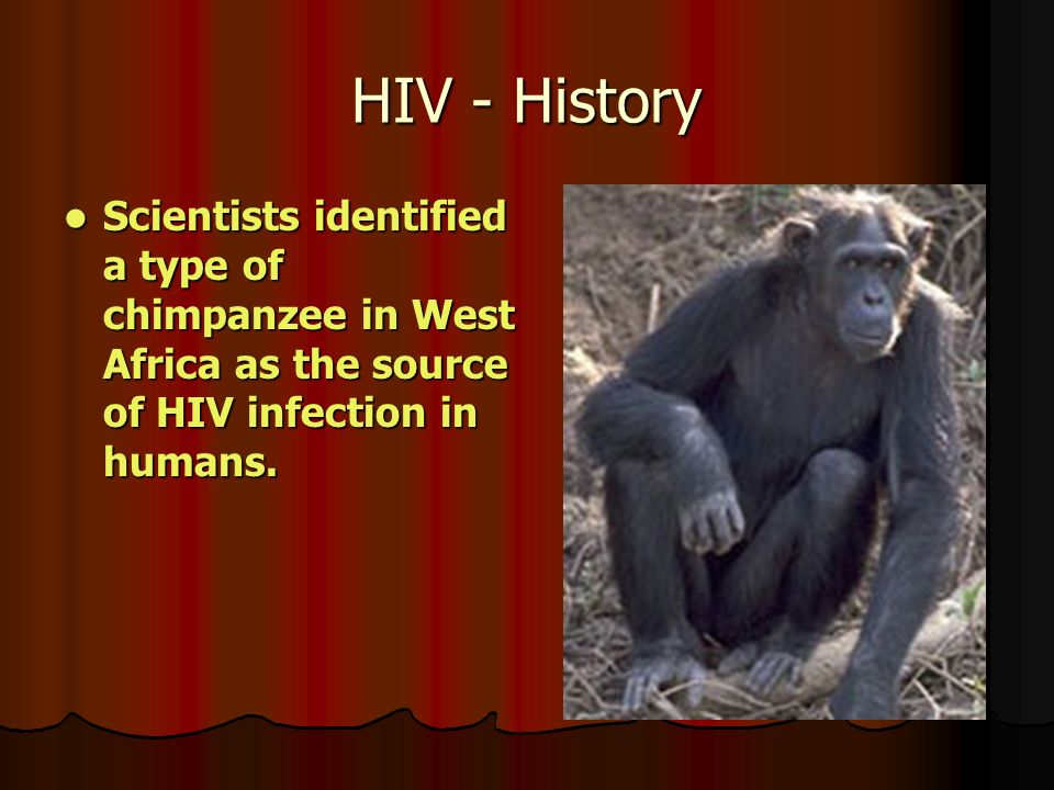 HIV - History Scientists identified a type of chimpanzee in West Africa as the source of HIV infection in humans.