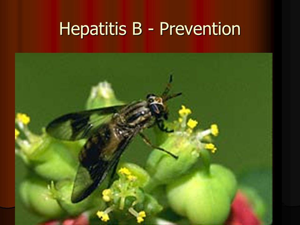 Hepatitis B - Prevention
