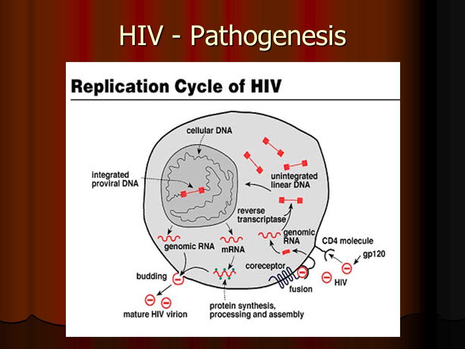 HIV - Pathogenesis