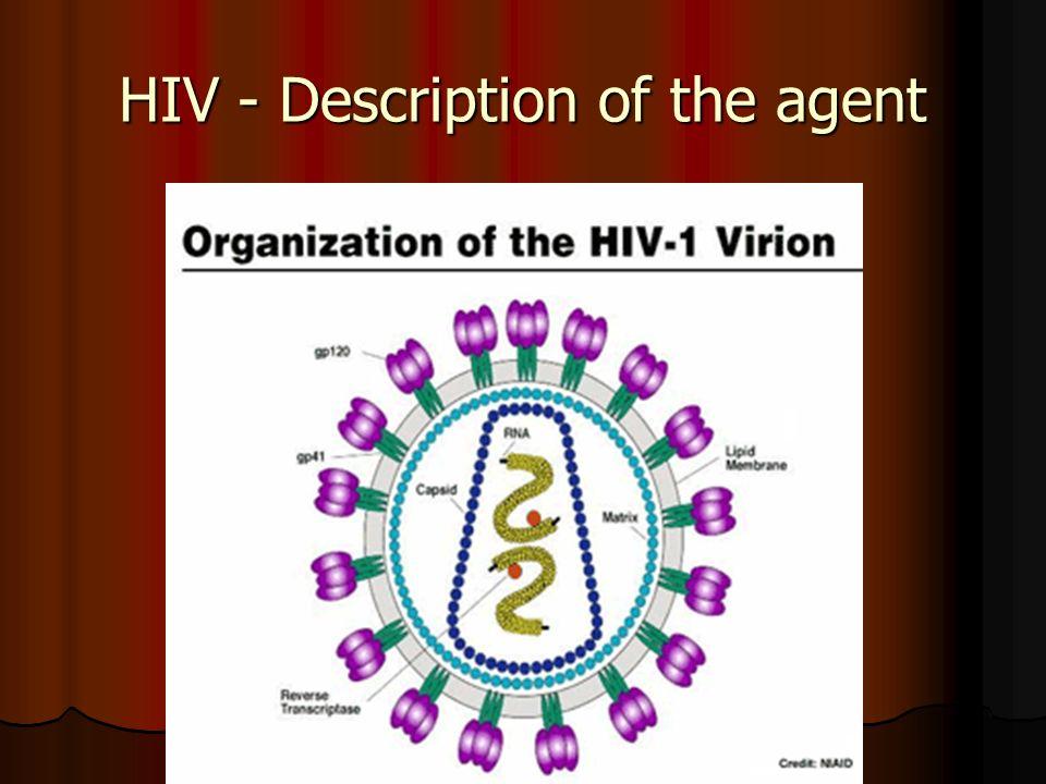 HIV - Description of the agent