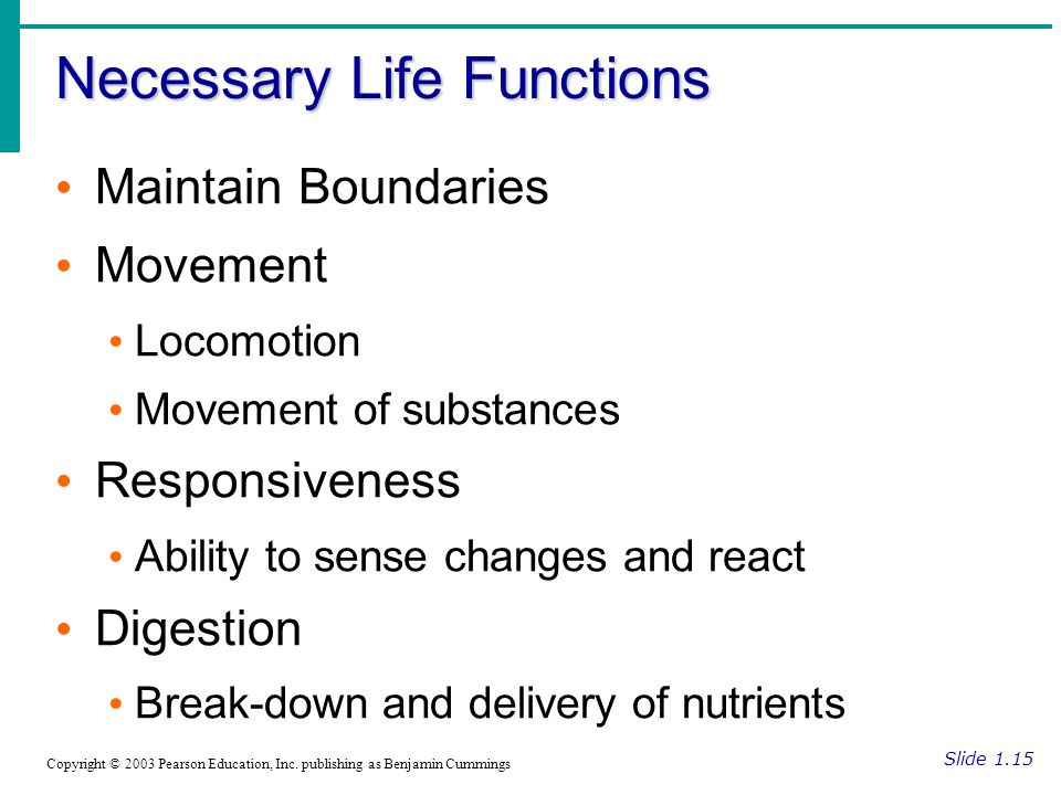 Necessary Life Functions Slide 1.15 Copyright © 2003 Pearson Education, Inc.