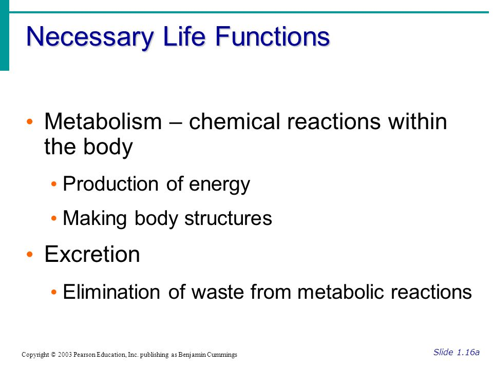 Necessary Life Functions Slide 1.16a Copyright © 2003 Pearson Education, Inc.