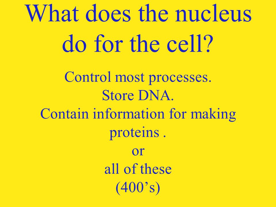 cell jeopardy. name of an organelle that is found in a plant cell, Human Body