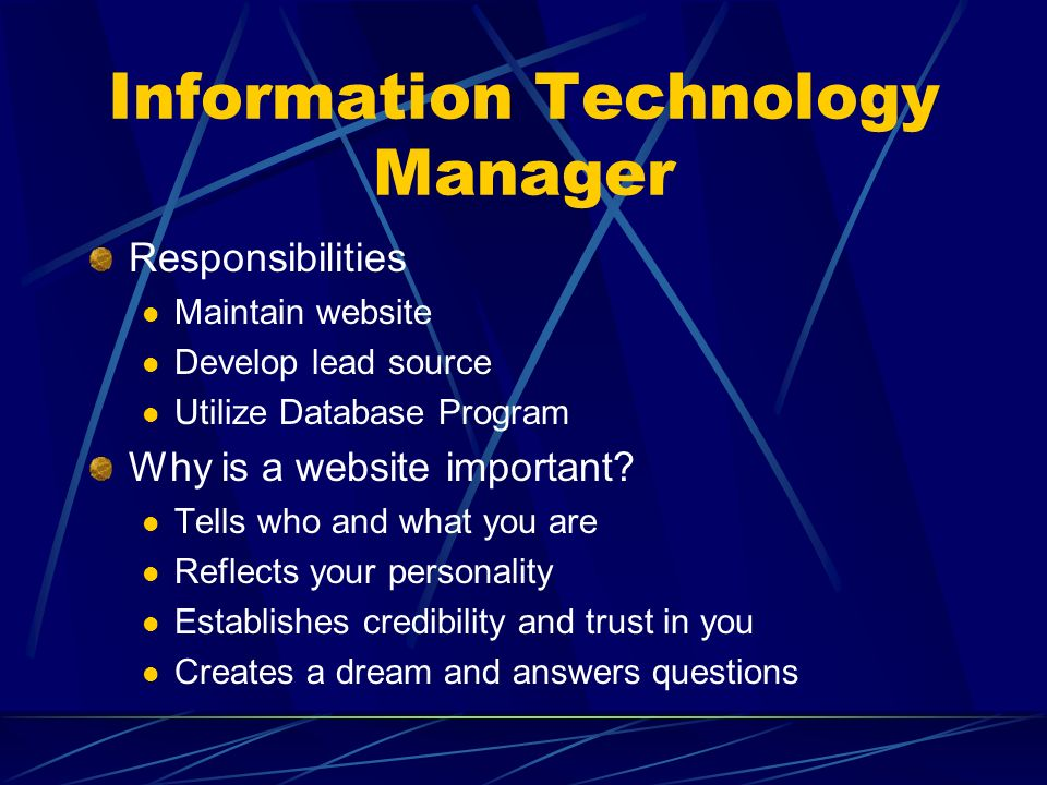 10 information technology manager responsibilities - Information Technology Responsibilities