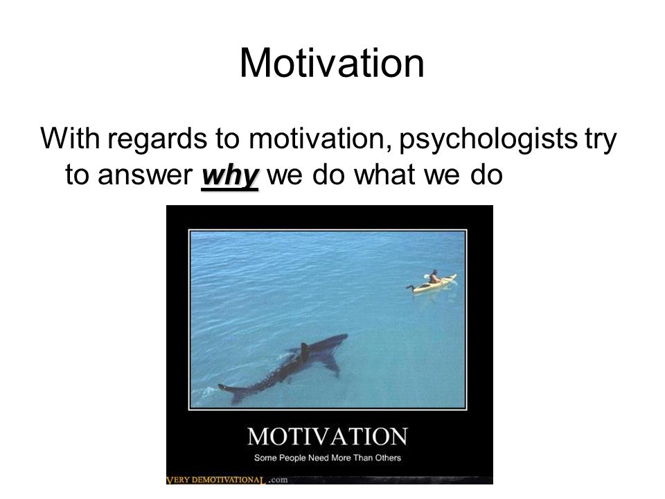 Motivation why With regards to motivation, psychologists try to answer why we do what we do