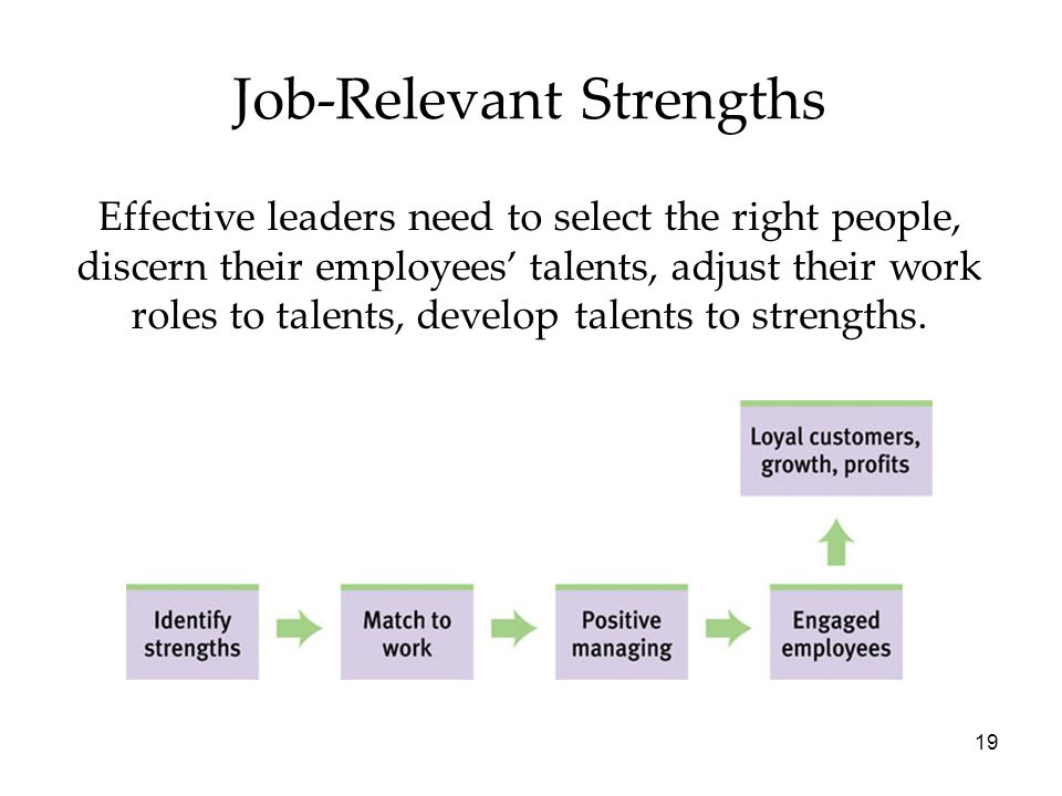 19 Job-Relevant Strengths Effective leaders need to select the right people, discern their employees' talents, adjust their work roles to talents, develop talents to strengths.