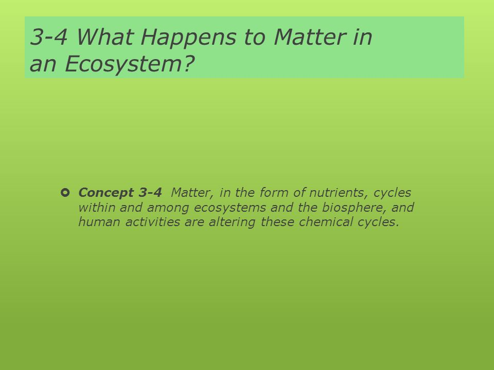 3-4 What Happens to Matter in an Ecosystem.