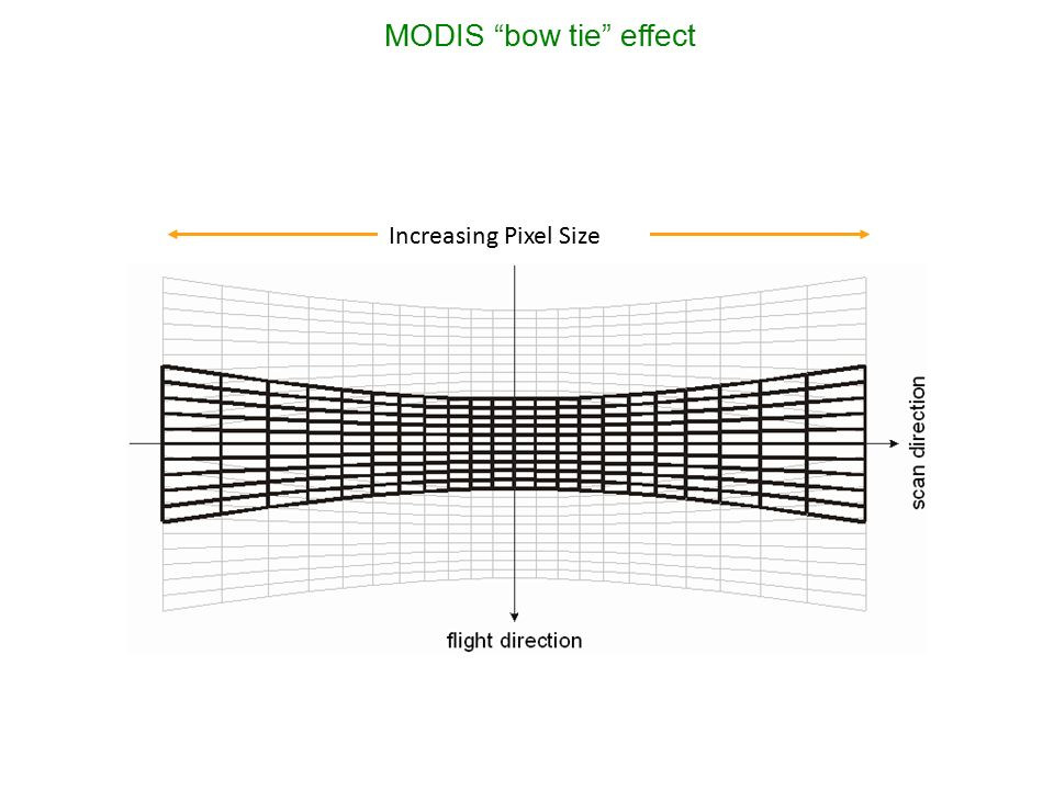 Image result for Bow Tie modis