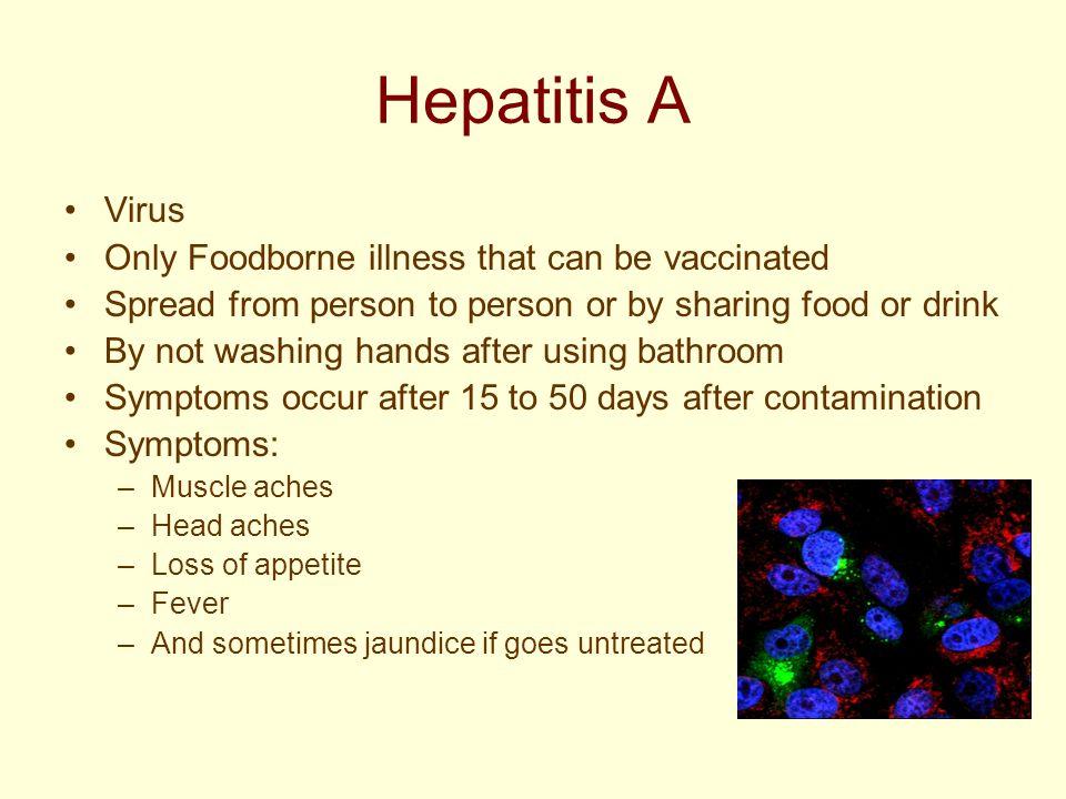 food borne illnesses hepatitis a