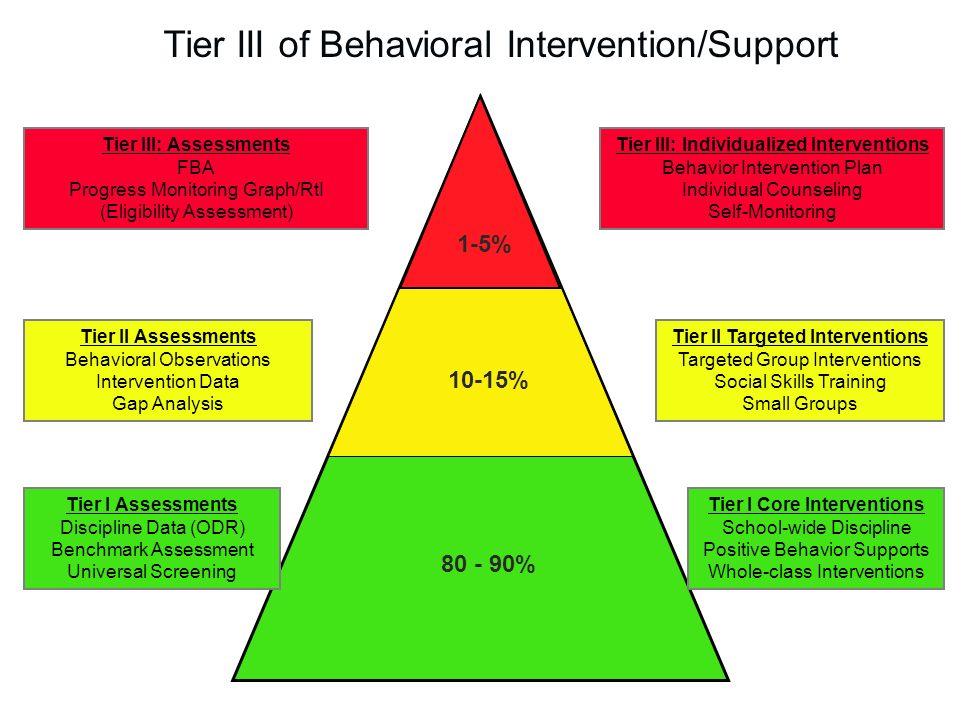charting and analysing behavior for support Efforts to support healthy brain development ideally establish limits for challenging behavior and disciplinary strategies, which should be applied consistently and.