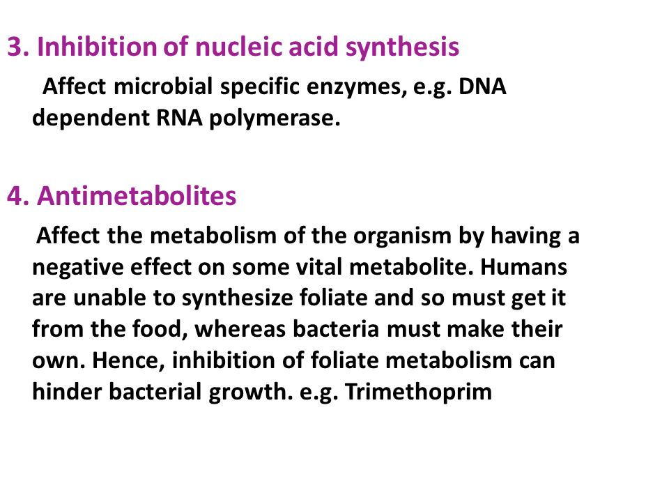 protein synthesis is vital for cell growth and metabolism essay