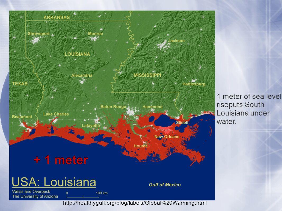 Environmental Impacts Of Sealevel Rise And Associated Adaptive - Louisiana sea level map