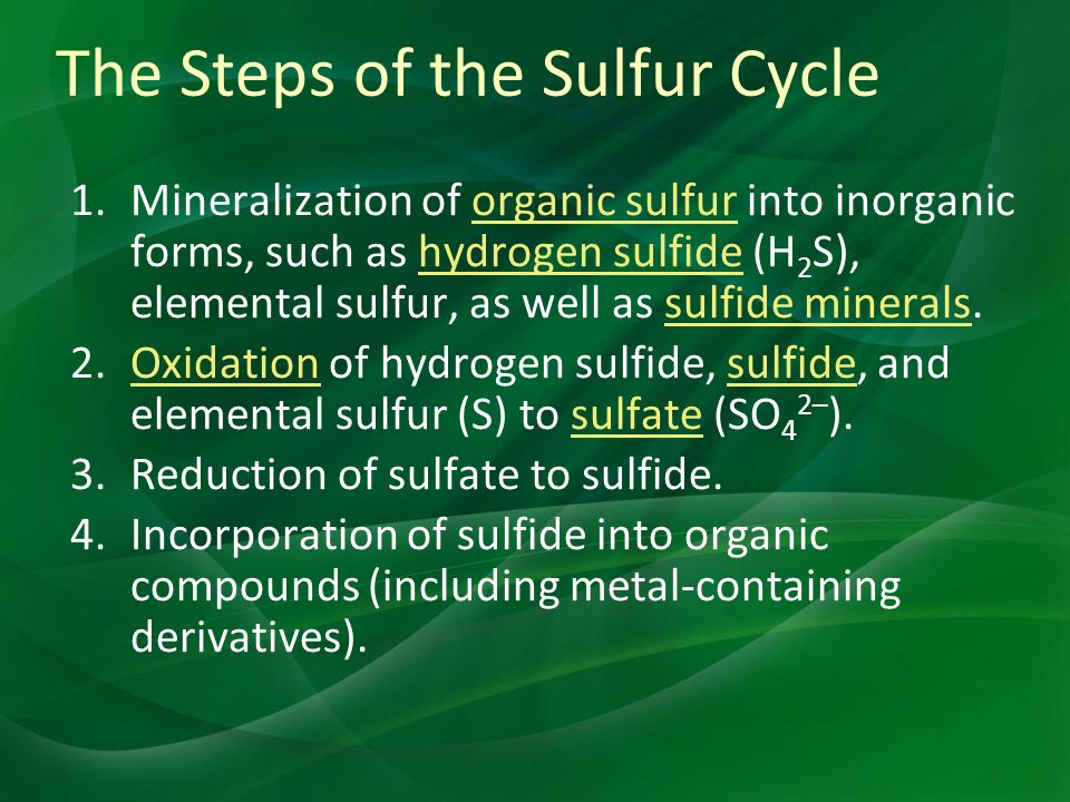 The Steps of the Sulfur Cycle 1.Mineralization of organic sulfur into inorganic forms, such as hydrogen sulfide (H 2 S), elemental sulfur, as well as sulfide minerals.organic sulfurhydrogen sulfidesulfide minerals 2.Oxidation of hydrogen sulfide, sulfide, and elemental sulfur (S) to sulfate (SO 4 2– ).Oxidationsulfidesulfate 3.Reduction of sulfate to sulfide.
