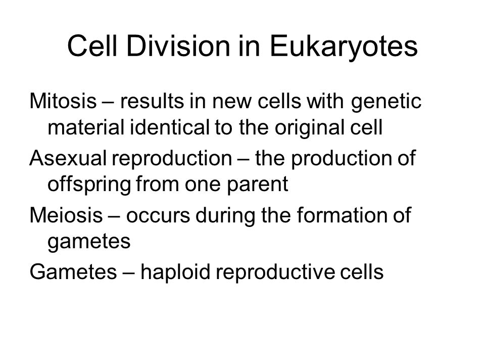 Q  What is the difference between a diploid and a haploid cell     SlidePlayer