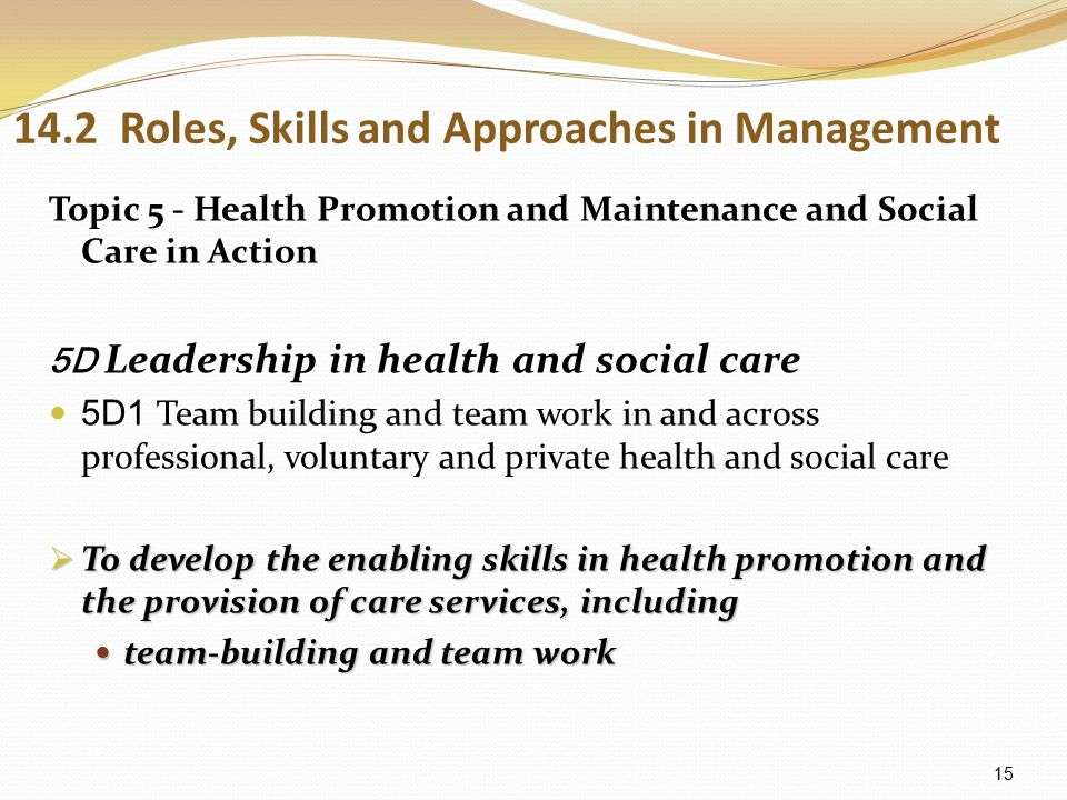 understand the role of the social care worker 2 essay