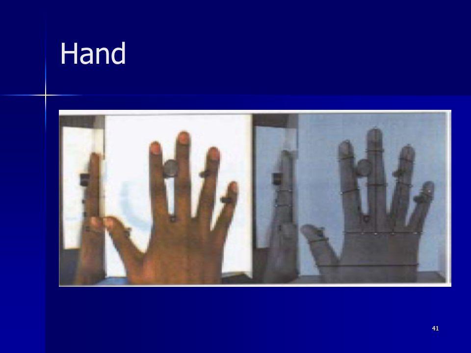 41 Hand
