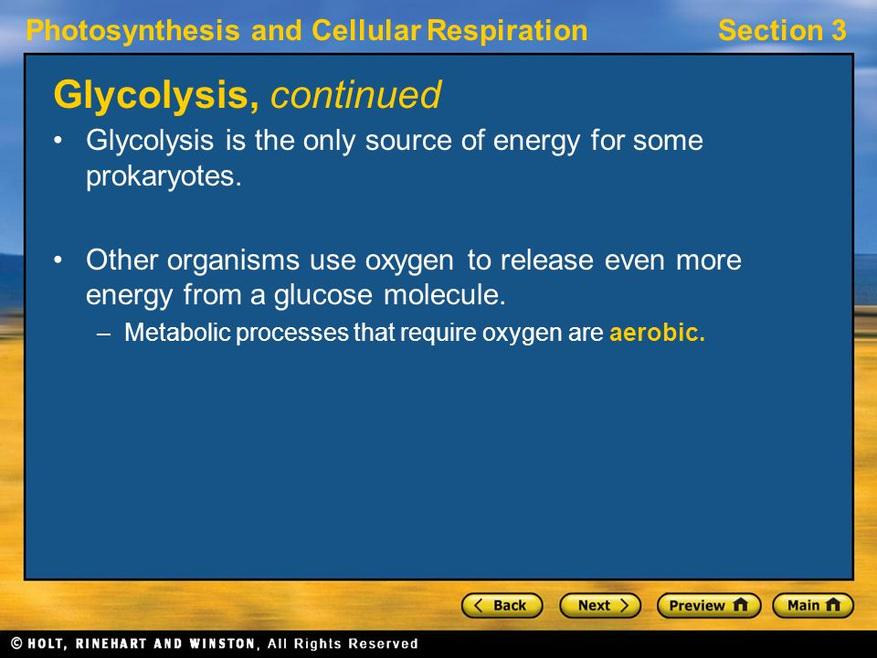 Photosynthesis and Cellular RespirationSection 3 Glycolysis, continued Glycolysis is the only source of energy for some prokaryotes.