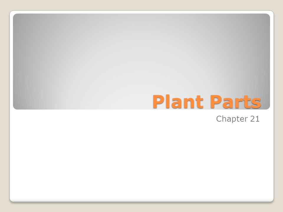 Plant Parts Chapter 21