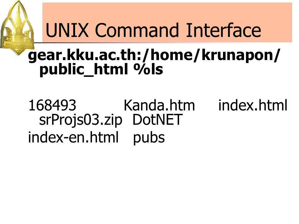 index.html Example 1: Single Line Comment