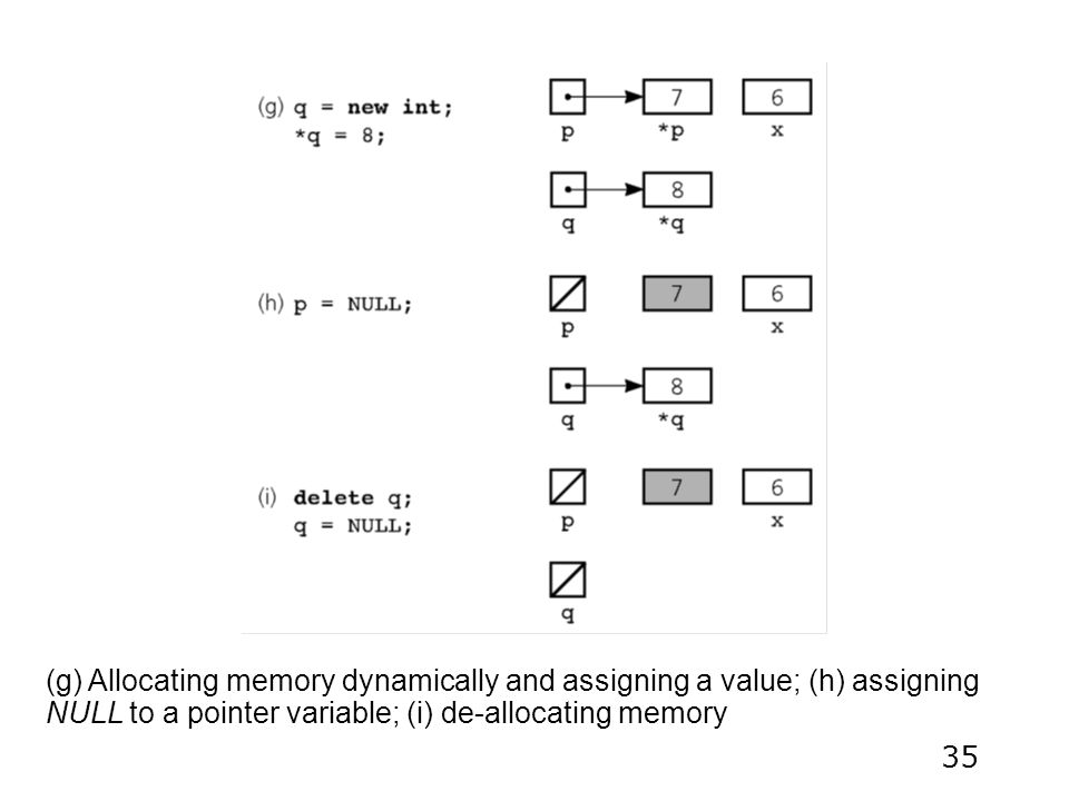 35 (g) Allocating memory dynamically and assigning a value; (h) assigning NULL to a pointer variable; (i) de-allocating memory