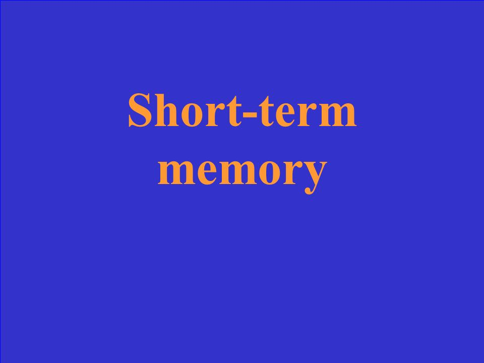 Also called working memory