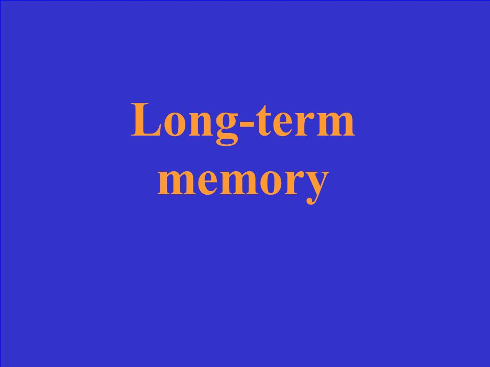 Our most permanent memory store, with almost unlimited capacity and duration