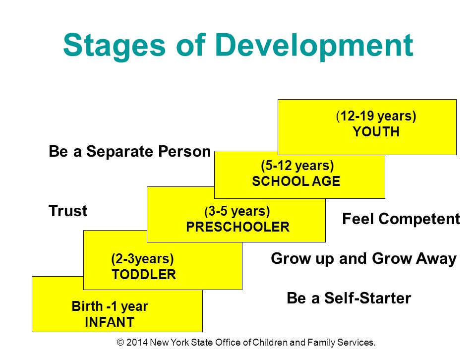 Stages of Development Birth -1 year INFANT (2-3years) TODDLER ( 3-5 years) PRESCHOOLER (5-12 years) SCHOOL AGE (12-19 years) YOUTH Be a Self-Starter Trust Grow up and Grow Away Feel Competent Be a Separate Person © 2014 New York State Office of Children and Family Services.