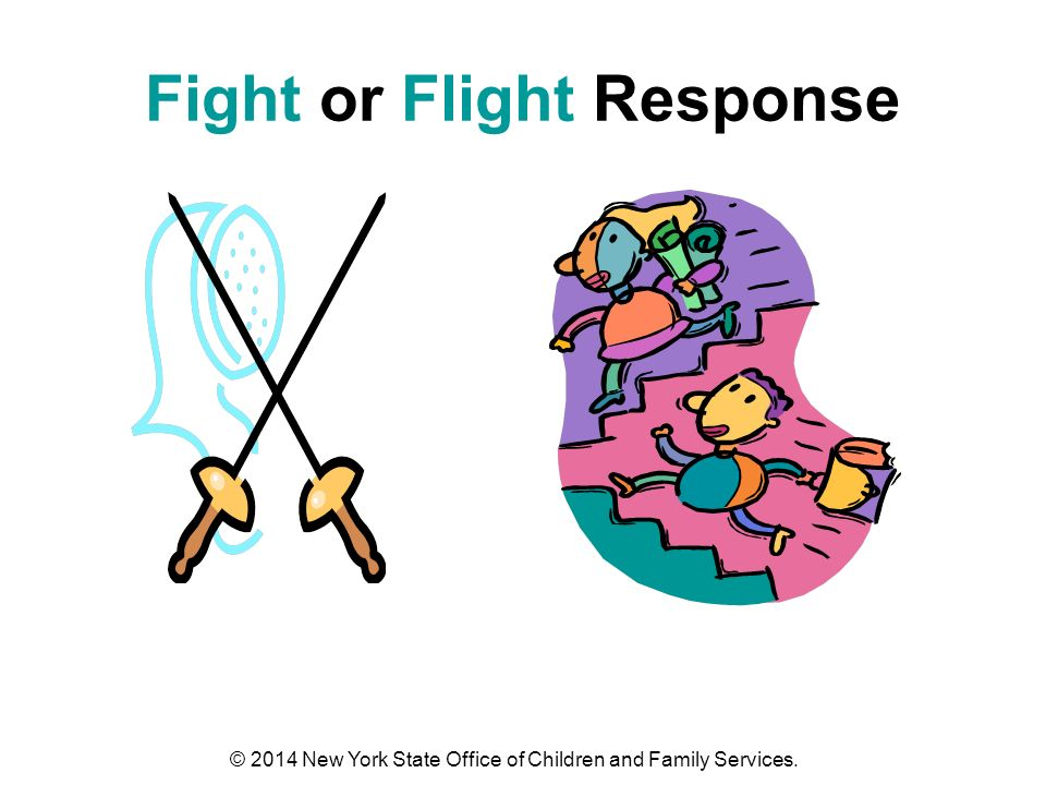 Fight or Flight Response © 2014 New York State Office of Children and Family Services.