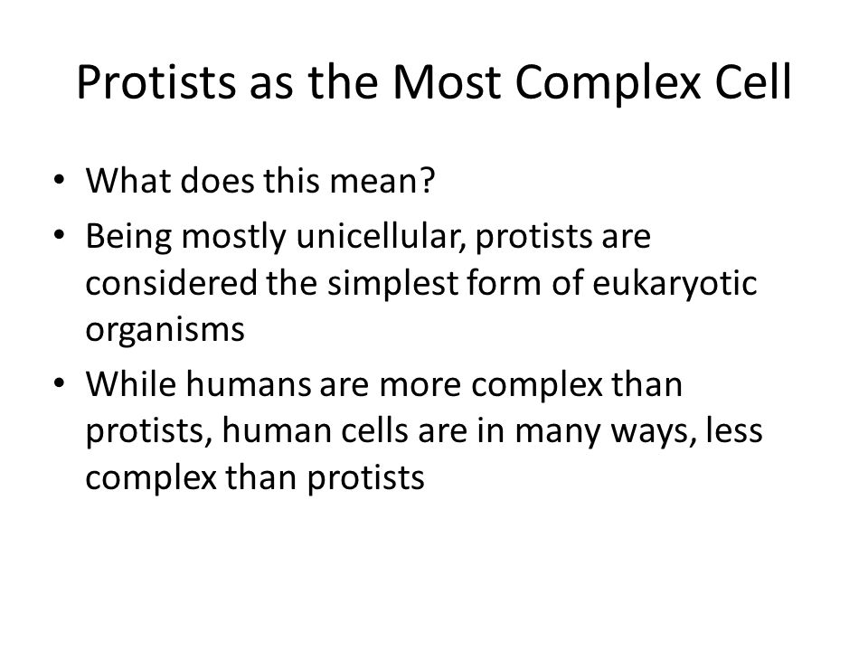 Protists. Protists are the Most Diverse of all Eukaryotes ...