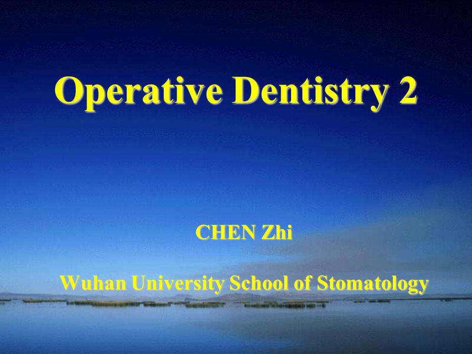 CHEN Zhi Wuhan University School of Stomatology Operative Dentistry 2