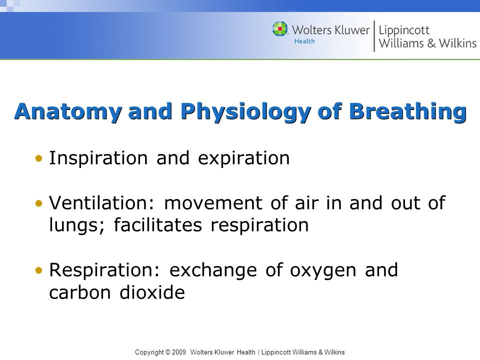 Copyright © 2009 Wolters Kluwer Health | Lippincott Williams & Wilkins Anatomy and Physiology of Breathing Inspiration and expiration Ventilation: movement of air in and out of lungs; facilitates respiration Respiration: exchange of oxygen and carbon dioxide