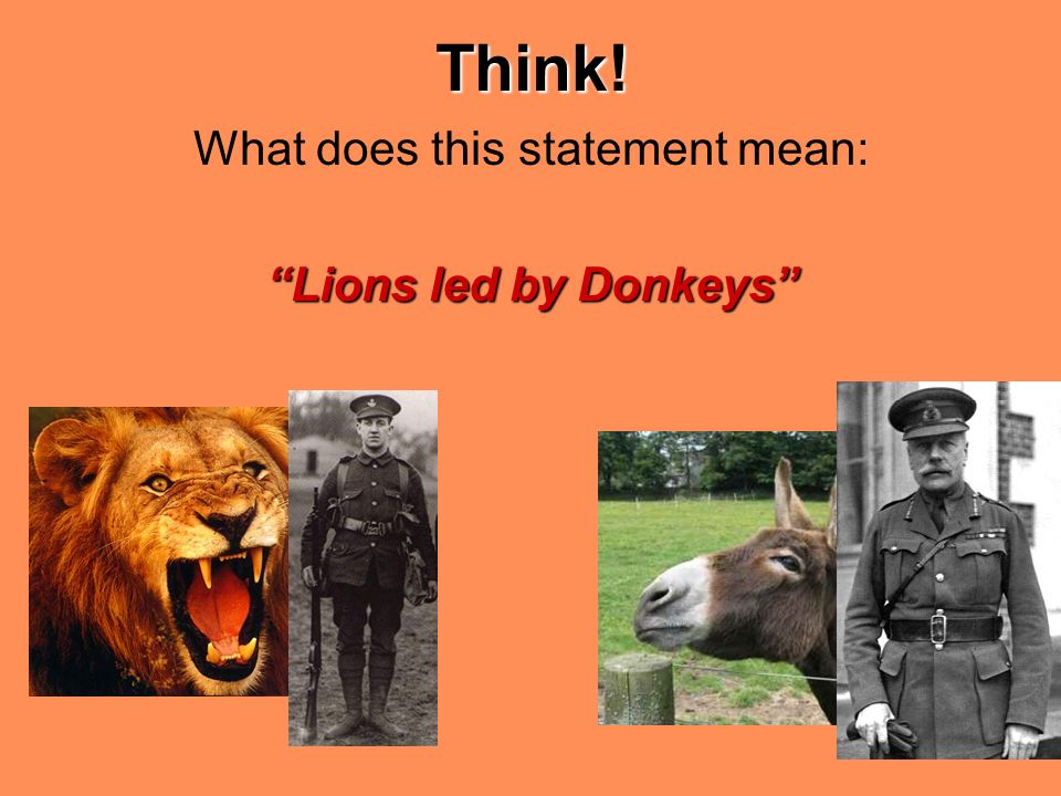were the british soldiers lions led by donkeys essay The somme - lions led by donkeys - youtube this phrase is the base of my essay essay about lions led by donkeys - 1630 words lions led by donkeys essay  lions led by donkeys ever since the end of ww1 in 1918 which was won by the british were the british soldiers lions led by donkeys.