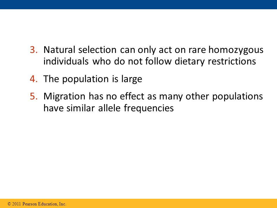 3.Natural selection can only act on rare homozygous individuals who do not follow dietary restrictions 4.The population is large 5.Migration has no effect as many other populations have similar allele frequencies © 2011 Pearson Education, Inc.