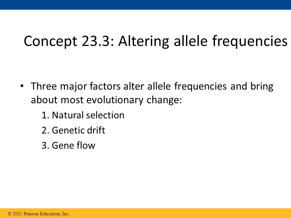 Three major factors alter allele frequencies and bring about most evolutionary change: 1.