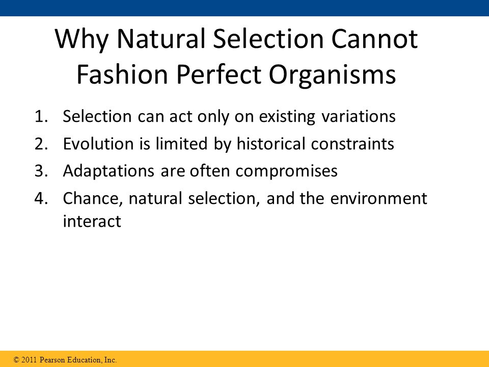 Why Natural Selection Cannot Fashion Perfect Organisms 1.Selection can act only on existing variations 2.Evolution is limited by historical constraints 3.Adaptations are often compromises 4.Chance, natural selection, and the environment interact © 2011 Pearson Education, Inc.