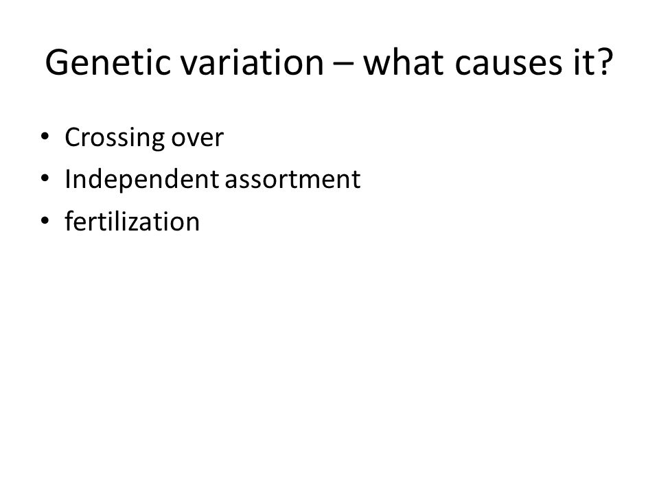 Genetic variation – what causes it Crossing over Independent assortment fertilization