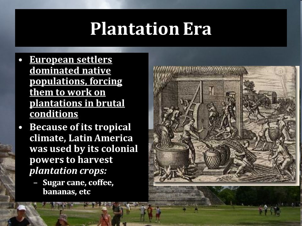 Plantation Era European settlers dominated native populations, forcing them to work on plantations in brutal conditions Because of its tropical climate, Latin America was used by its colonial powers to harvest plantation crops: –Sugar cane, coffee, bananas, etc