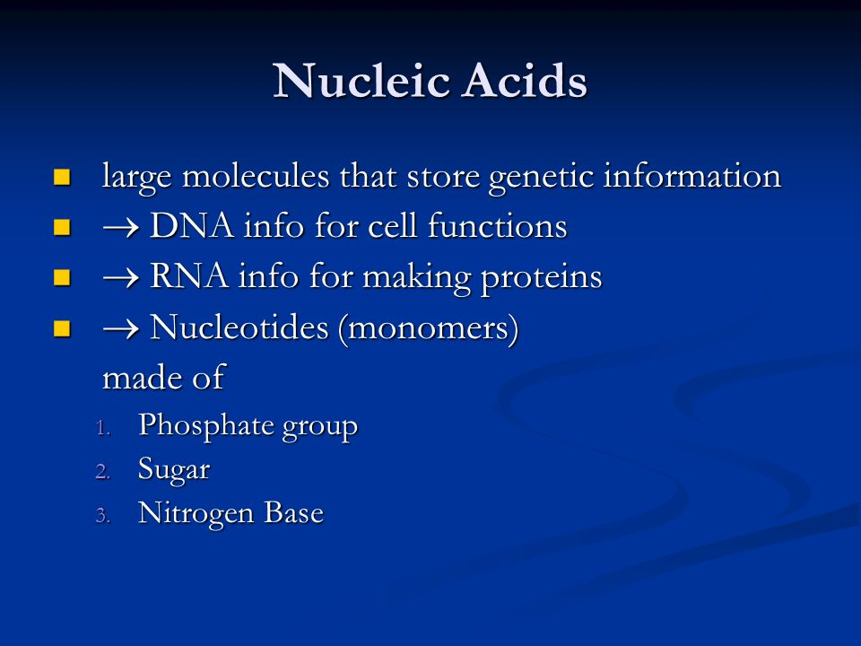 Nucleic Acids large molecules that store genetic information large molecules that store genetic information  DNA info for cell functions  DNA info for cell functions  RNA info for making proteins  RNA info for making proteins  Nucleotides (monomers)  Nucleotides (monomers) made of 1.