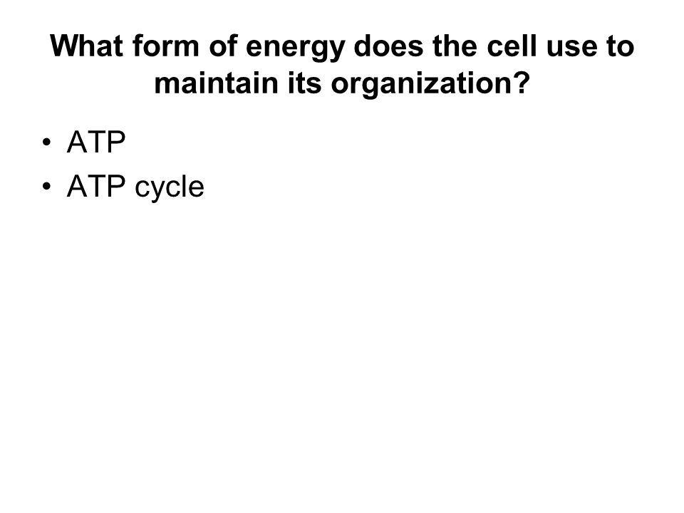 What form of energy does the cell use to maintain its organization ATP ATP cycle