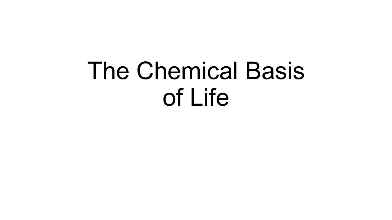 the chemical basis of life Chapter 4 the chemical basis of life introduction • your body is an elaborate chemical system • chemical signals between brain less enable your mind to.